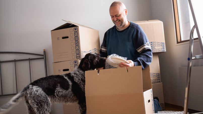 Ten Terrific Things To Do Before Your Removalists Arrive