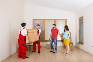 Cannon hill removalists
