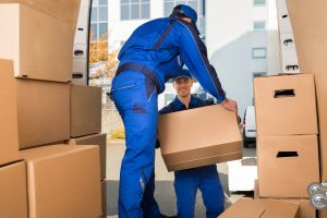Karana Downs removals