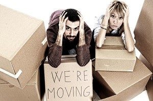 brisbane-taree-removalists